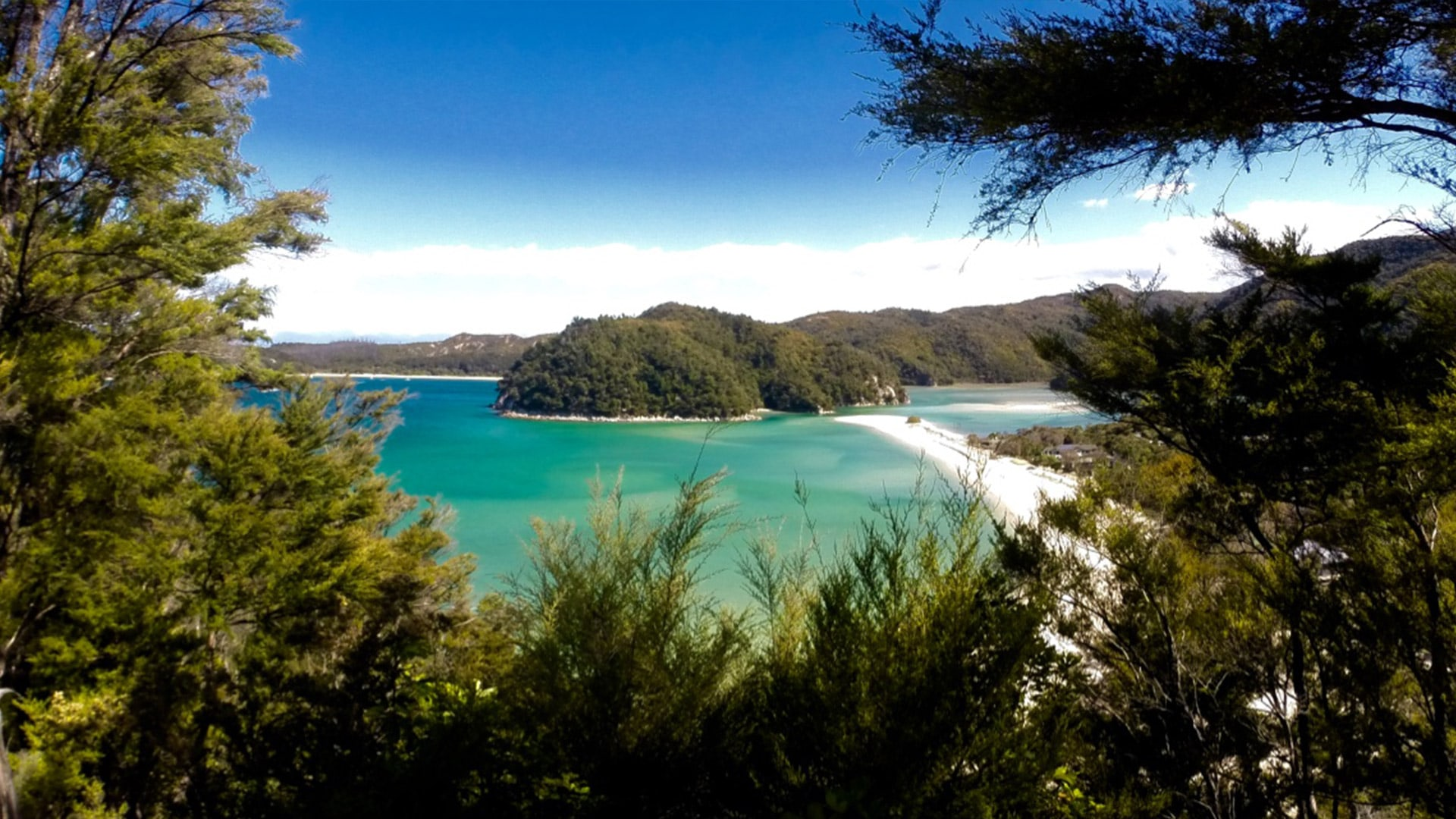 new-zealand-water-journey-clear-beaches
