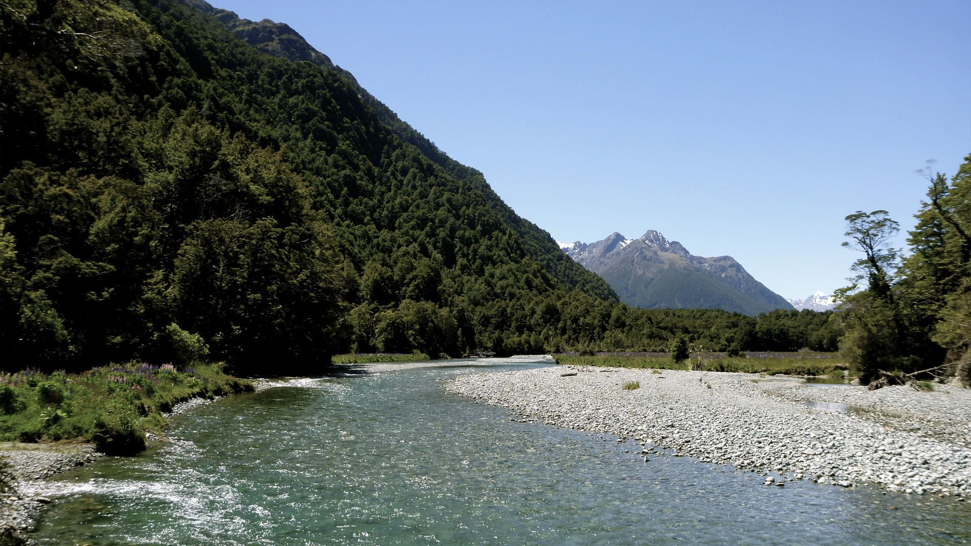new-zealand-water-journey-rivers-mountains